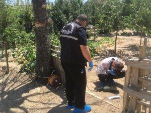 Kuru ağacı taşlama makinesiyle budarken boğazını kesti