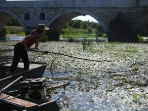 İspanyol öğretim görevlisi doğaseverlerle Tunca Nehri'nde temizlik yaptı