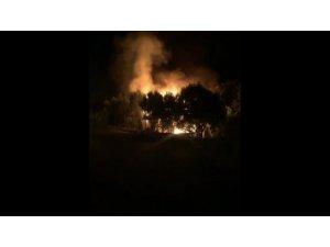 Bursa'da bağ evinde korkutan yangın