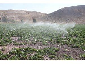 Sivas Gürün Suçatı Sulaması 1. Kısım inşaatının çalışmaları tamamlanarak sulamaya açıldı