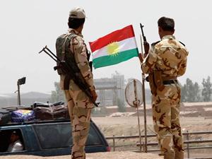 Almanya Kürtlere yardım diye bakın ne göndermiş