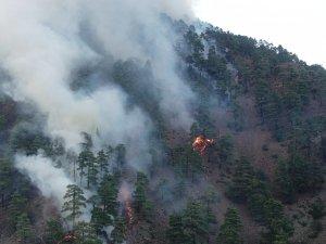 """Vali Günaydın: """"Yanan yerlerin büyük kısmı örtü yangını, ormanlarımızda büyük kaybımız yok"""""""