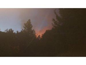 Kozan'ın Kızlarsekisi bölgesinde orman yangını