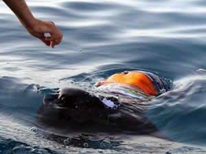Akdeniz'de kaçak göçmen teknesi battı: 20 ölü, 150 kayıp!