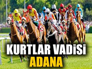 Kurtlar Vadisi Adana