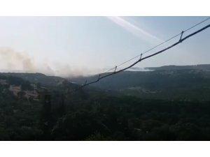 Savaştepe'de orman yangını