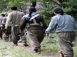 Çinli 3 işçi PKK tarafından kaçırıldı!