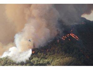Muğla'da yanan alan 40 bin hektara yaklaştı