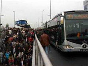 Hayvanları kese kağıtlarında metrobüse kadar getirdiler!