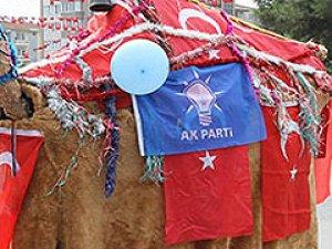 Bu da AK Partili deve!