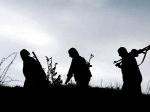 PKK yol kesip, kamyonları yaktı