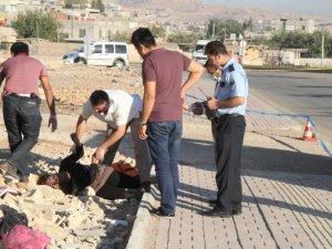 Şanlıurfa'da bir kadın boğularak yol kenarına atıldı