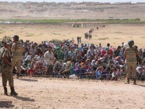 Türkiye sınırına yığıldılar!