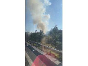Üsküdar'da ağaçlık alanda korkutan yangın