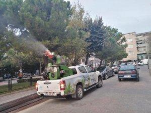Sultangazi Belediyesi dantel böceğine karşı teyakkuzda
