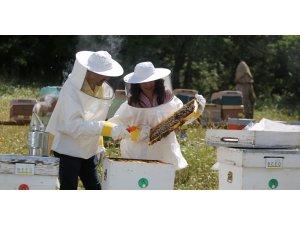 Arıcılara uzanan yardım eli umut oluyor.