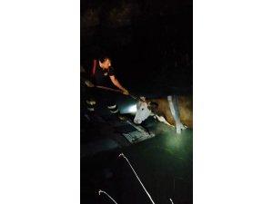 Yangın söndürme havuzuna düşen ineği itfaiye ekipleri kurtardı