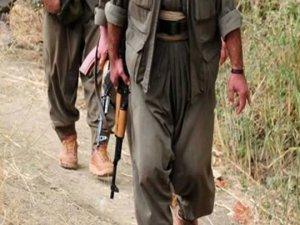 1 terör örgütü PKK'lı teslim oldu