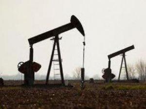 Petrol fiyatları 4 yılın dibinde