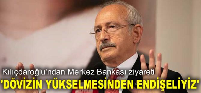 Kılıçdaroğlu, Merkez Bankası Başkanı Kavcıoğlu ile görüştü