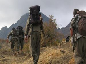 Almanya: PKK'ya yardım söz konusu değil