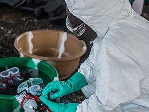 Nijerya'da 42 gündür ebola virüsüne rastlanmıyor