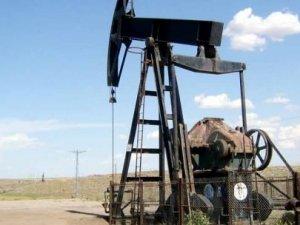 Niğde'deki petrol kuyuları kapatıldı!