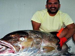 Dev balığı oltayla yakaladı