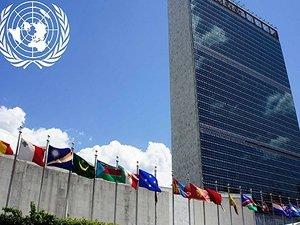 Haitili kolera mağdurları, BM'den davacı oldu