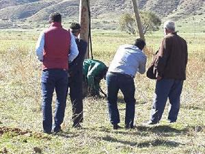 Bir PKK vahşeti daha! Direğe bağlayıp kurşuna dizdiler