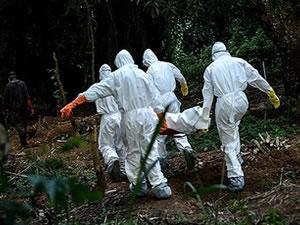 Ebola, Afrika turizmini bitirdi