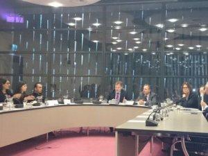 Avrupa Konseyi'nden polis şiddetine soruşturma