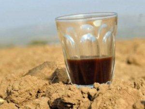 Çay ve kahve su kaybına yol açar mı?