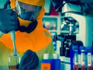 Ebola için klinik deneyler başlıyor