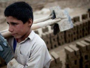 Türkiye'de çocuk işçi sayısı: 893 bin