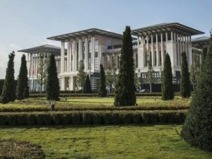 Ak-Saray'ın bahçesine dikilen ağaçların tanesi 3000 Euro mu?