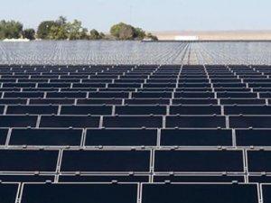 Dünyanın en büyük güneş enerji çiftliği