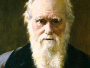 Darwin'in bilgileri internette