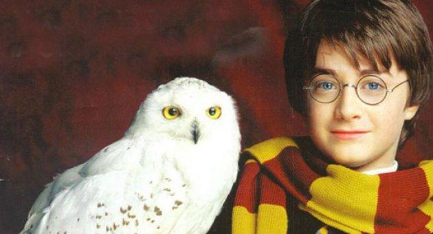 12 kısa Harry Potter hikayesi geliyor