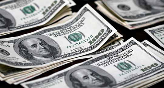 Dolar uçtu, merkez bankası frenledi