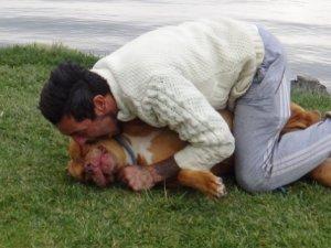 Köpeği Tanyi'yi ısırdı, olay oldu