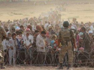 Sınır hatlarında son 5 yılda 110 kişi hayatını kaybetti!
