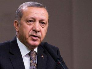 Washington Post'tan Cumhurbaşkanı Erdoğan'a karikatür