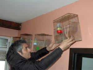 Kadıköy'de 'kuş' operasyonu