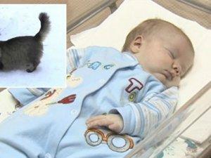 Terk edilmiş bebeği kedi kurtardı