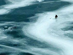 Dünyanın en büyük göllerinden olan Ontario dondu