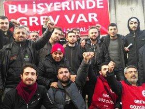 Birleşik Metal-İş sendikasına bağlı işçiler greve başladı