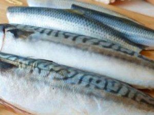 Balık yiyen çocuklar daha zeki oluyor