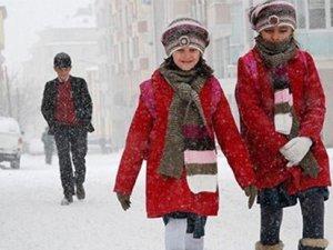 19 Şubat'ta okulların tatil olduğu il ve ilçeler