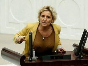 CHP'den HDP'ye çakal tepkisi